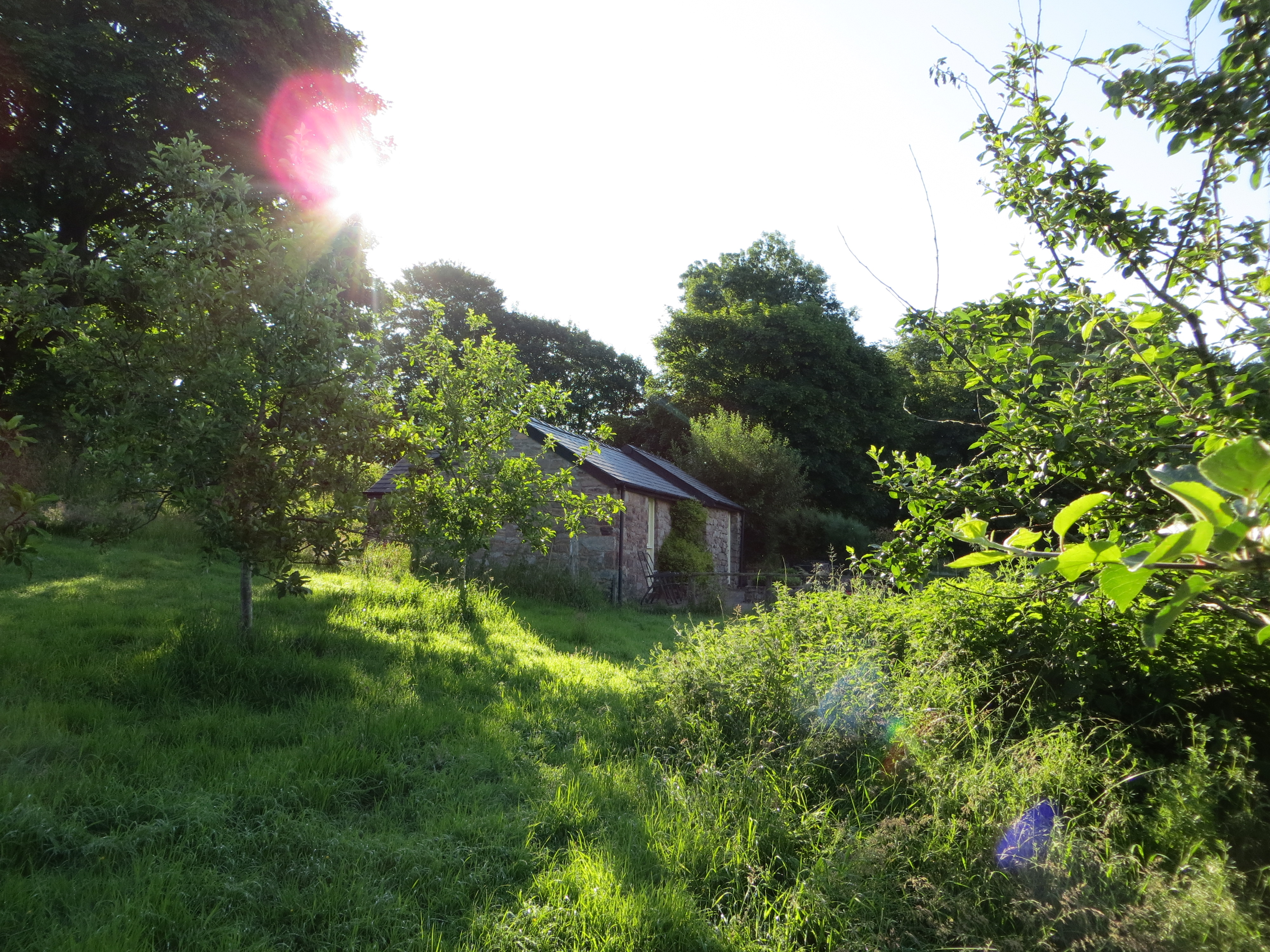 The cottage is set in an apple orchard