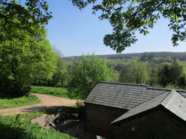 View of Wye Valley hill across cottage roof